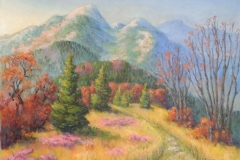 Blick auf den Belchen im Herbst