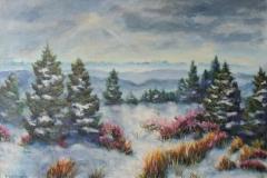 Blick von der Schnepfhalde zu den Alpen