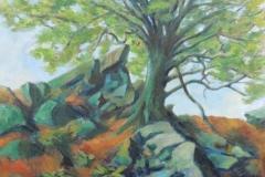 Spriessender Baum