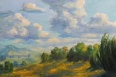 Wolkenschauspiel in der Schneifel Oel auf Leinwand 50x70 cm
