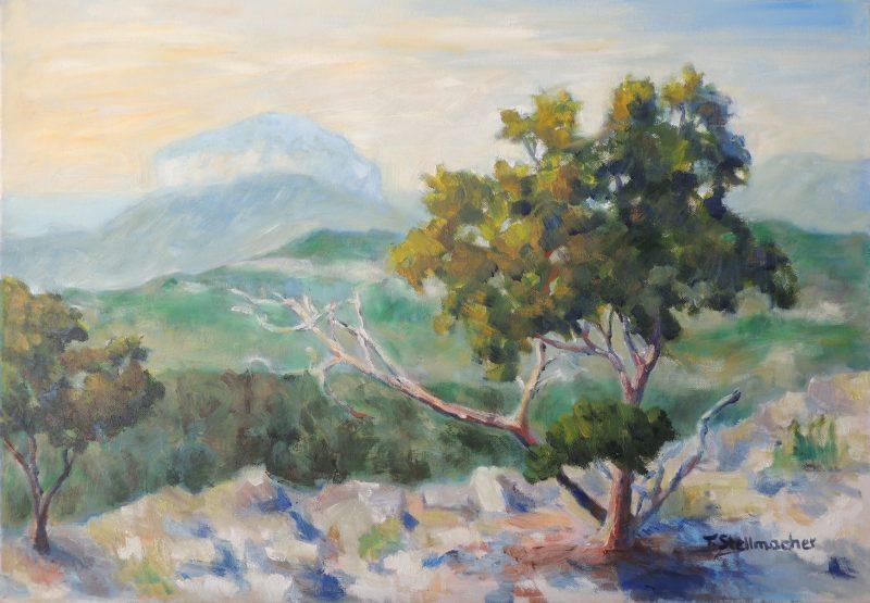 In der Tramuntana auf Mallorca Oelbild auf Leinwand 50x70 cm