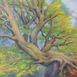 Ueberhaengender Baum Acryl auf Leinwand 54x74 cm