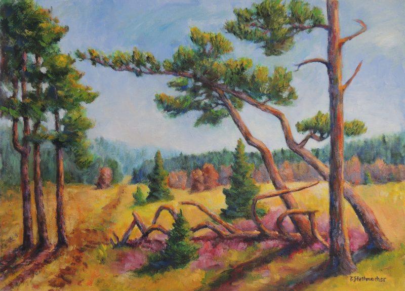 Stürzende Bäume im Hohen Venn Acryl auf Leinwand 50x70cm